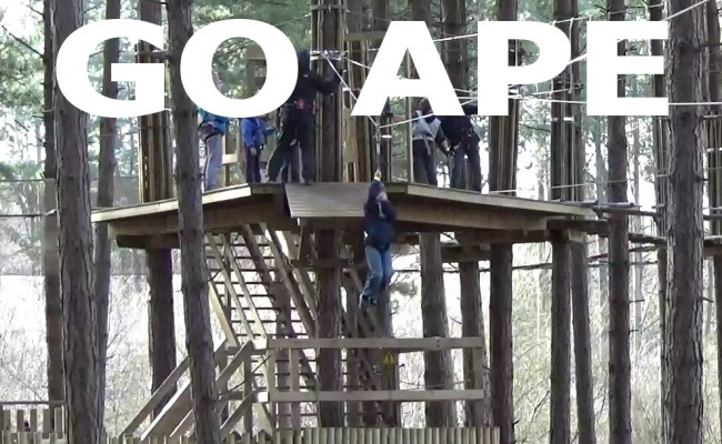 The Go Ape Adventure