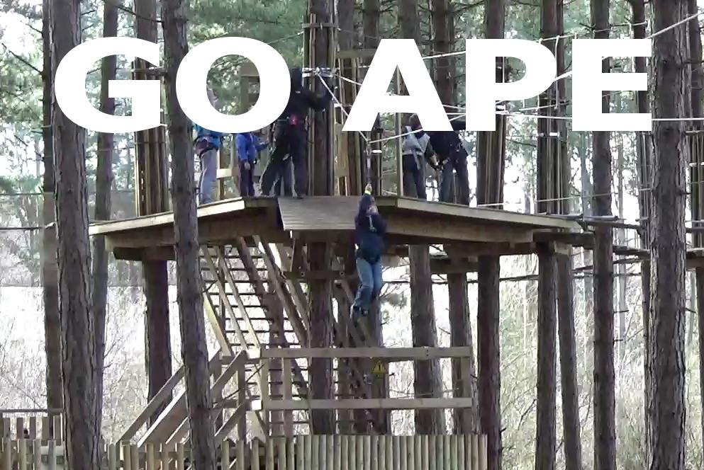 The Go Ape Adventure
